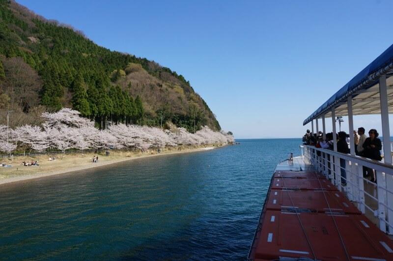 船上から海津大崎の桜を見る